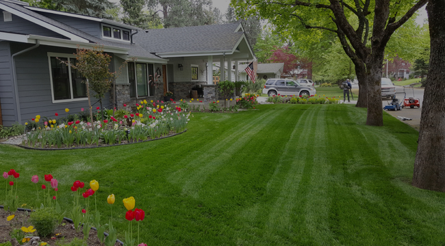 Hayden Lawn Care